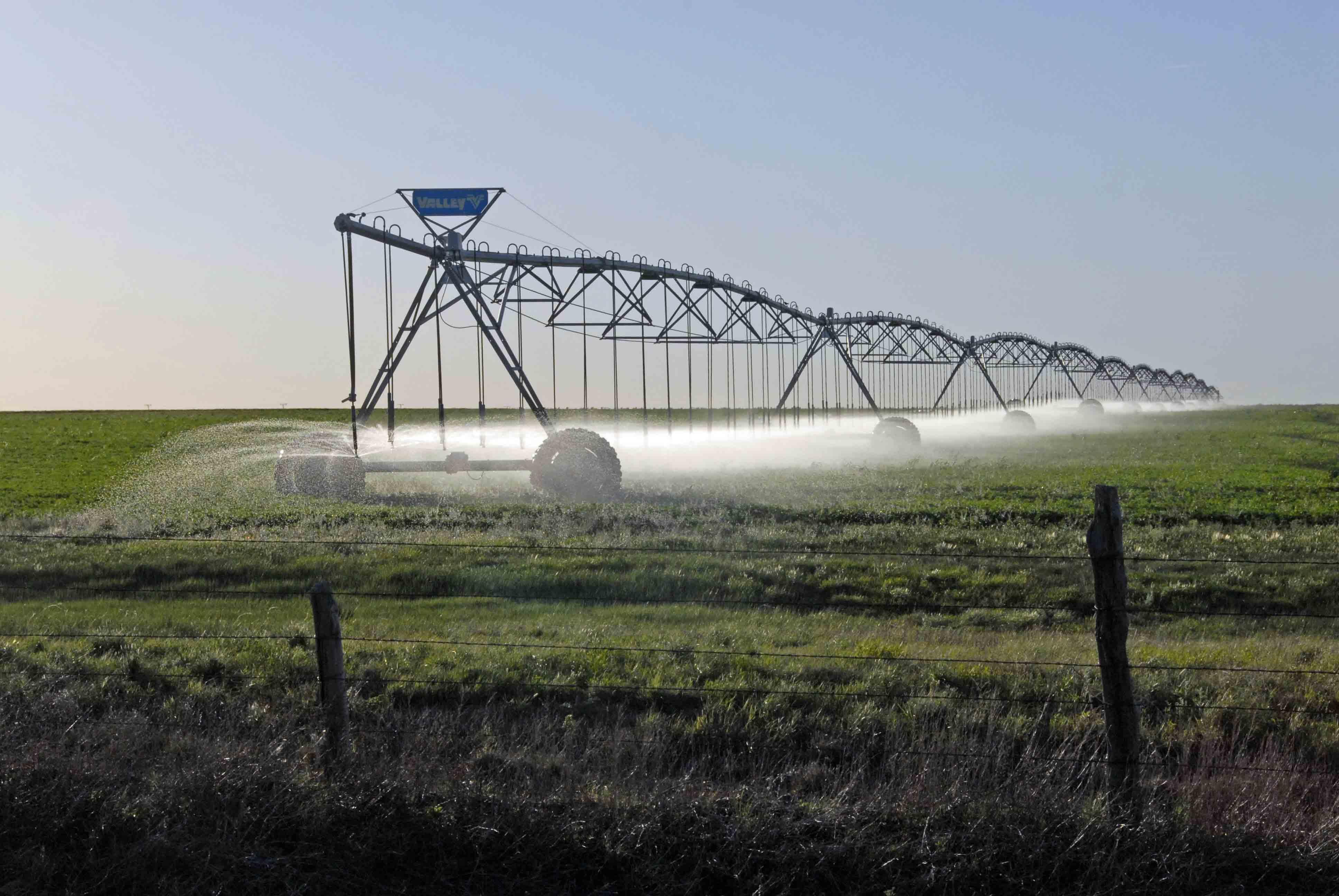 Irrigating a Texas cotton field